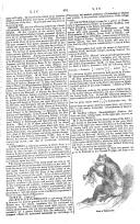 Pagina 461