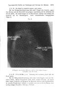Pagina 1071