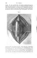 Pagina 594