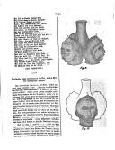 Pagina 1034