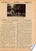 7 sep 1917