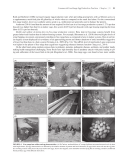 Pagina 95