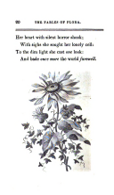 Pagina 20