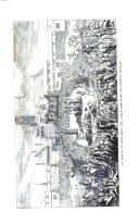 Pagina 550