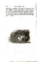 Pagina 242