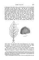 Pagina 219