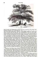 Pagina 960