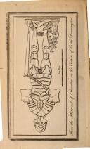 Pagina 1155