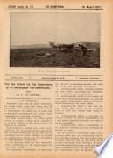 16 maart 1917
