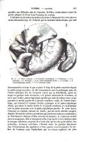 Pagina 147
